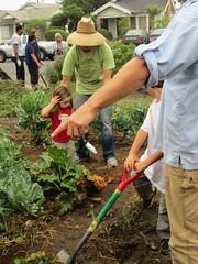 lawn(0.0), agriculture(1.0), garden(1.0), soil(1.0), gardener(1.0), farmworker(1.0), plantation(1.0),