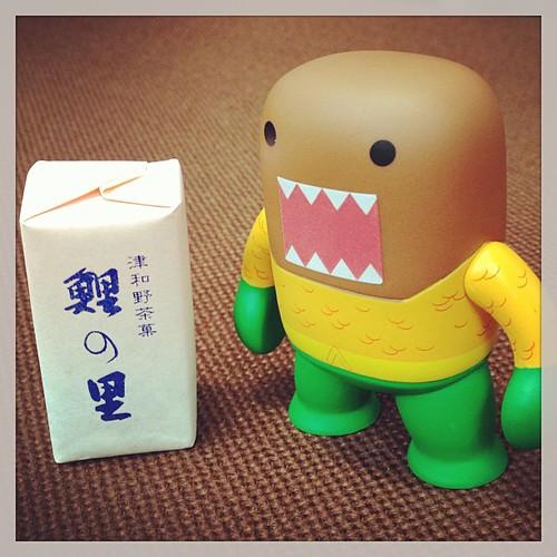 "Japanese Sweet ""Yokan"" #domo"