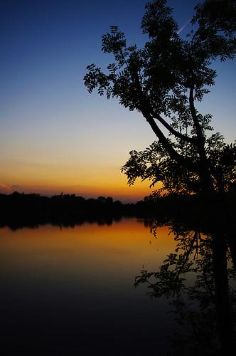 sunset lake tree water silhouette wiltshire pentaxkx somerfordkeynes neighbridge