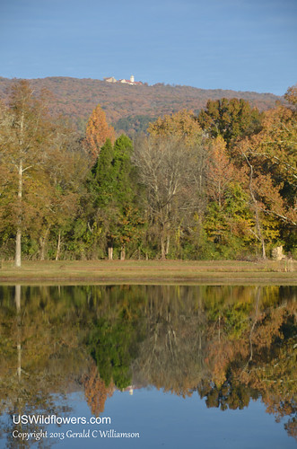 Reflections of Fall - and Covenant College