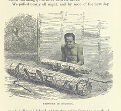 """British Library digitised image from page 223 of """"Adventures in the Great Forest of Equatorial Africa and the country of the dwarfs .. An abridged ... edition ... With ... illustrations"""""""