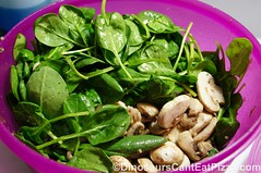 Spinach Salad (4)