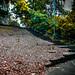FairField Park_Mel 09