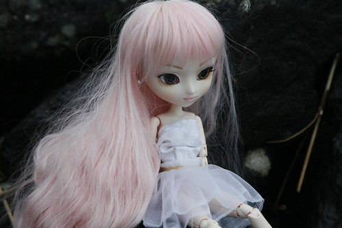 _MG_0359