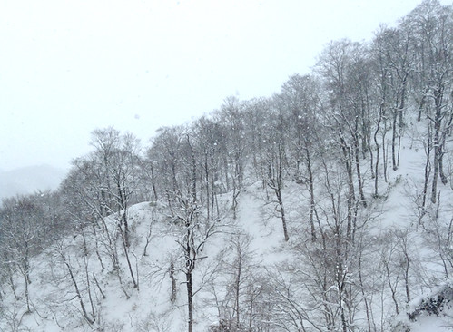 2014-01-03 12.01.36-2