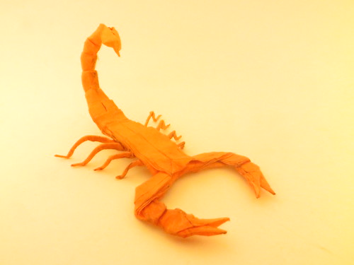Scorpion By Damian Malicki Origami On Flickr