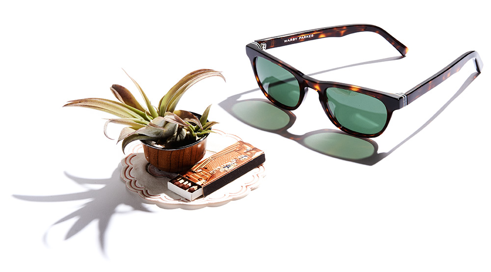 warby parker, palm canyon collection, eyewear,