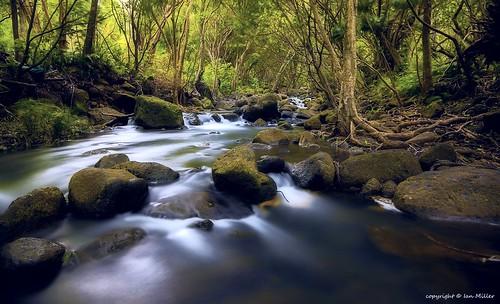 longexposure landscape hawaii nikon kauai nd d800 wailuariver 10stop ortoneffect