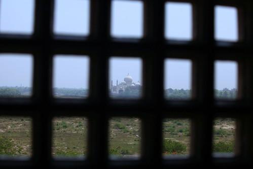 A prisoners view of the Taj Mahal