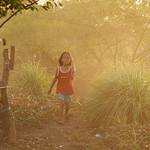 41062-012: Mainstreaming Environment for Poverty Reduction in the Philippines