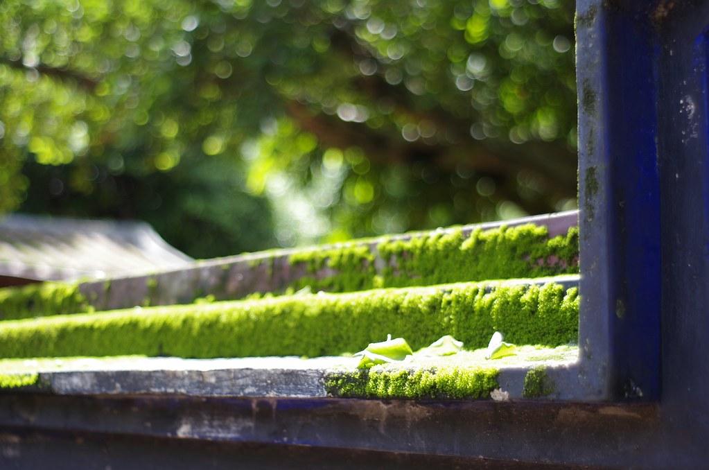 林家花園閒逛