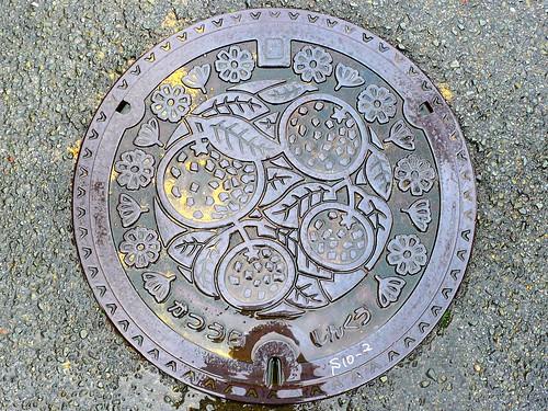 Katsuura Tokushima, manhole cover (徳島県勝浦町のマンホール)
