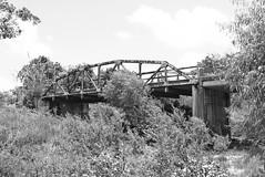 South Fork Mustang Creek Bridge, Lavaca County, Texas 1406281340bw