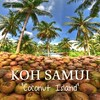 "Coconut shakes - Coconut oil - Coconut soap - fresh Coconut are just some of the reasons locals call Koh Samui,  ""Coconut Island"" #kohsamui #samui #coconut #Thailand"