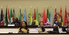 Africa-Arab World Joint Council of Ministers of Foreign Affairs, Economy, Trade and Finance