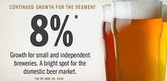 2016_American 'Craft' Beer Business