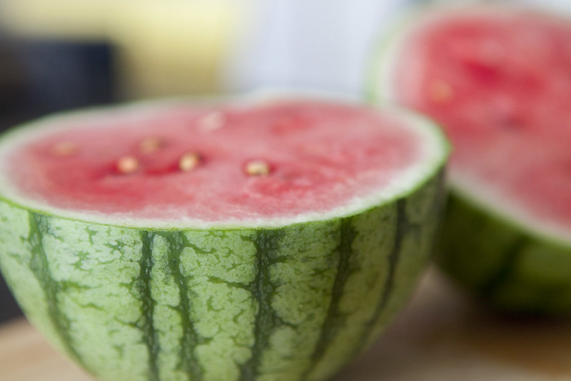 Watermelon HarvestIMG_3533