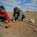 Mongolia climate change and adaptation