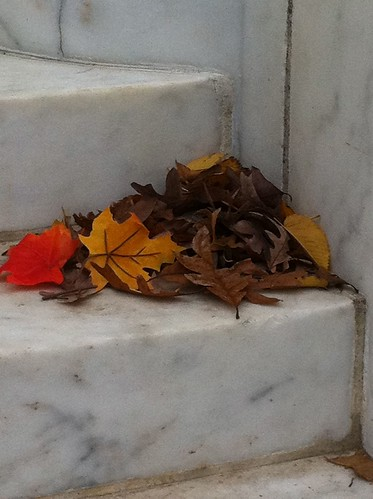 Fall leaves contrast with the marble stairs on the World War I Memorial in Washington, D.C. Urban forests also offer a plethora of colors as the season changes. (Courtesy Robert Westover)