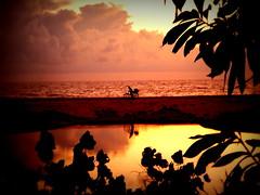 Cyclist in setting sun