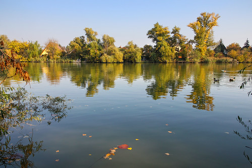 fall nature water leaves reflections river landscape hungary budapest duna danube xxi donau csepel 550d