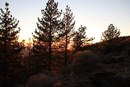 Sheep Camp Sunset