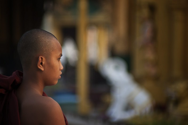 A Novice Monk At The Shwedagon, Burma