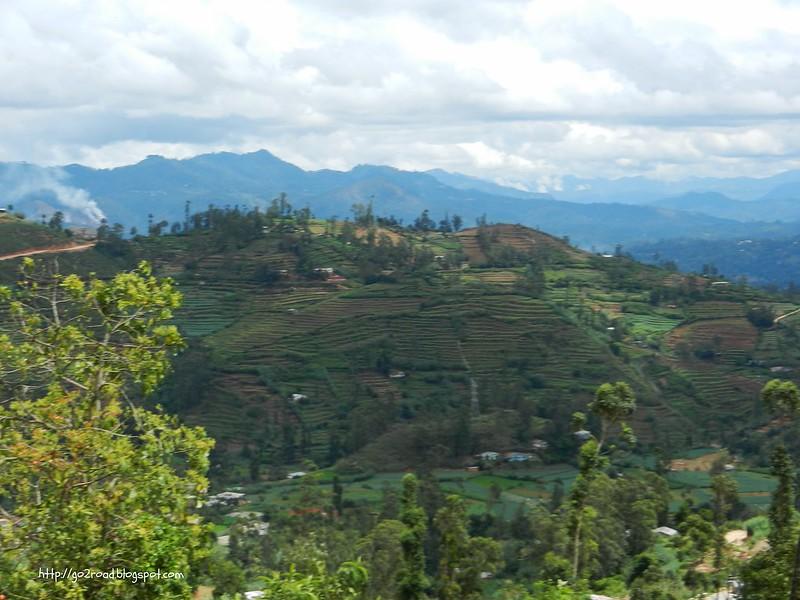 В горах Шри Ланки