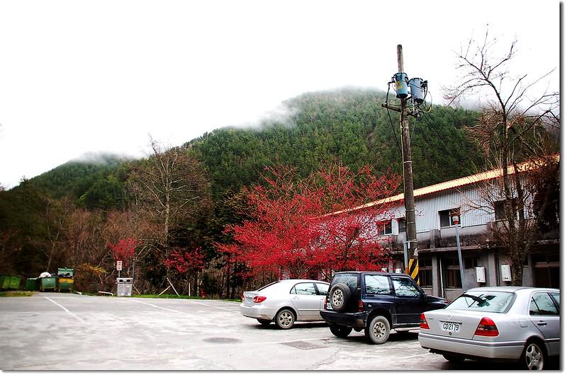 武陵農場 1