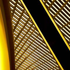 Harmonic Disruption - Yellow