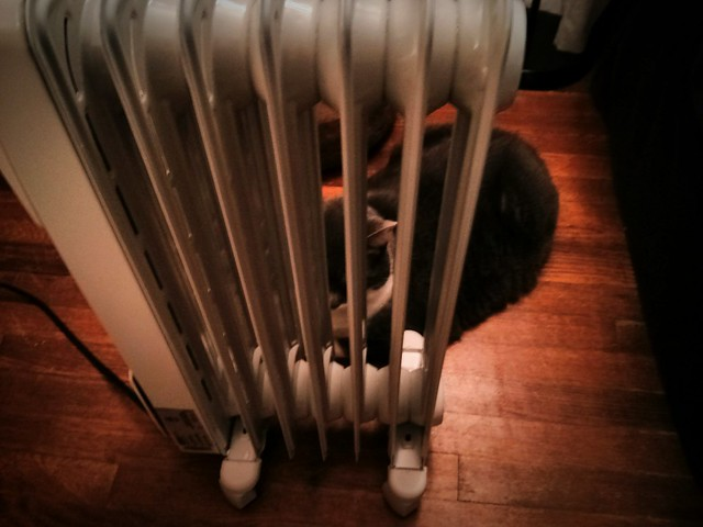 Someone finally noticed the portable heater is on.