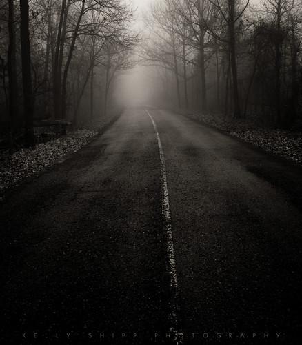 """""""Into the Fog"""" #2"""
