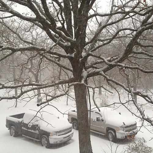 Obligatory snow pic