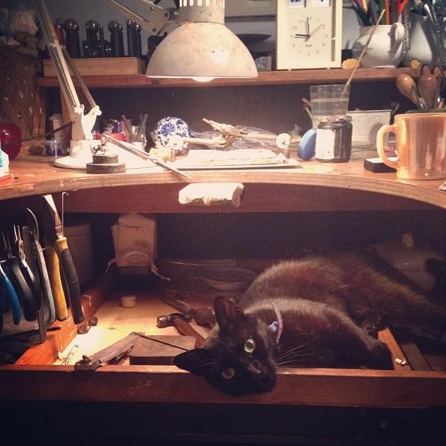 Not helping, but very cute. :) #catsitting #catsofinstagram