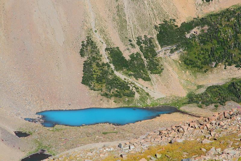 IMG_3780 Piegan Pass Trail