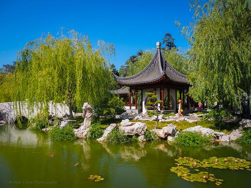 trees reflection architecture garden landscape la losangeles chinese bluesky olympus huntingtonlibrary pasadena lilypad omd em5 1250mmf3563mzuiko