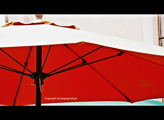 Intensely Red Umbrella
