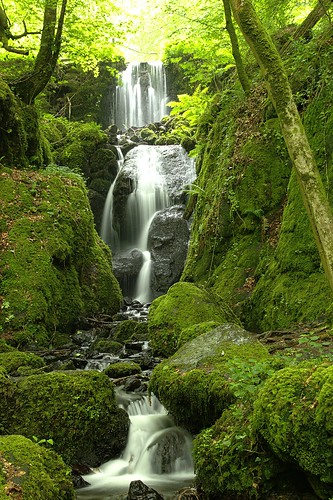 water waterfall moss devon dartmoor exmoor