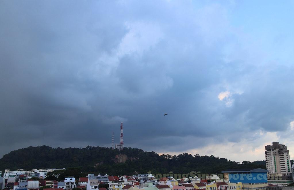 Bukit Timah (Hill)