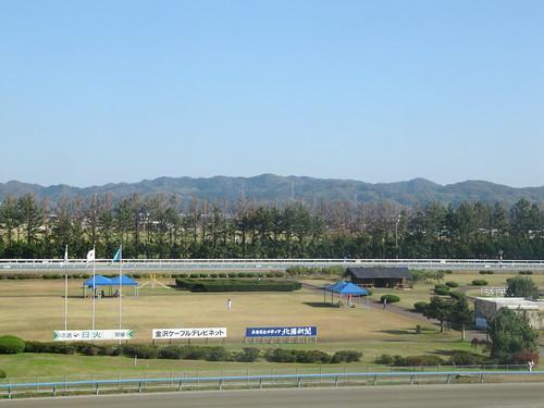 金沢競馬場の内馬場の芝生
