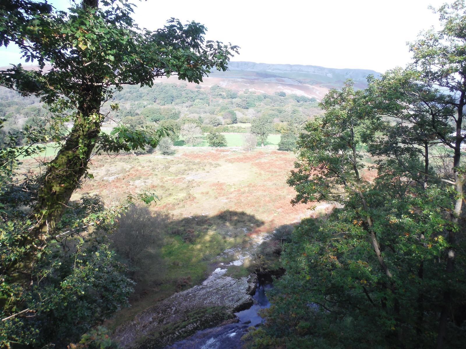 Cwm Tawe SWC Walk 280 Henrhyd Falls - Sgwd Henrhyd (Craig y Nos Circular)