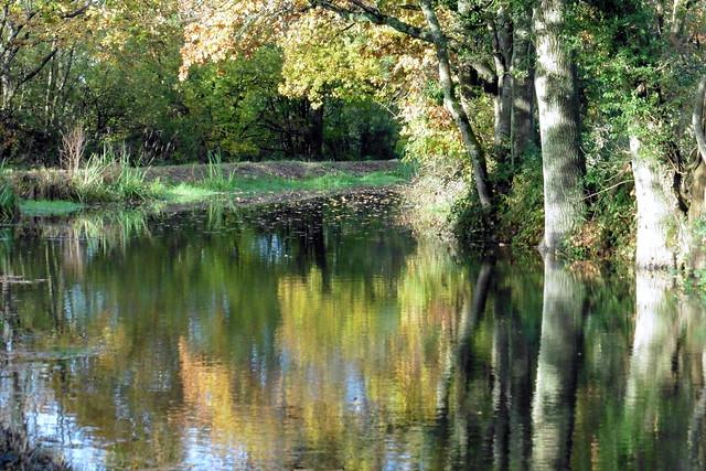 On The Canal, Panasonic DMC-TZ55
