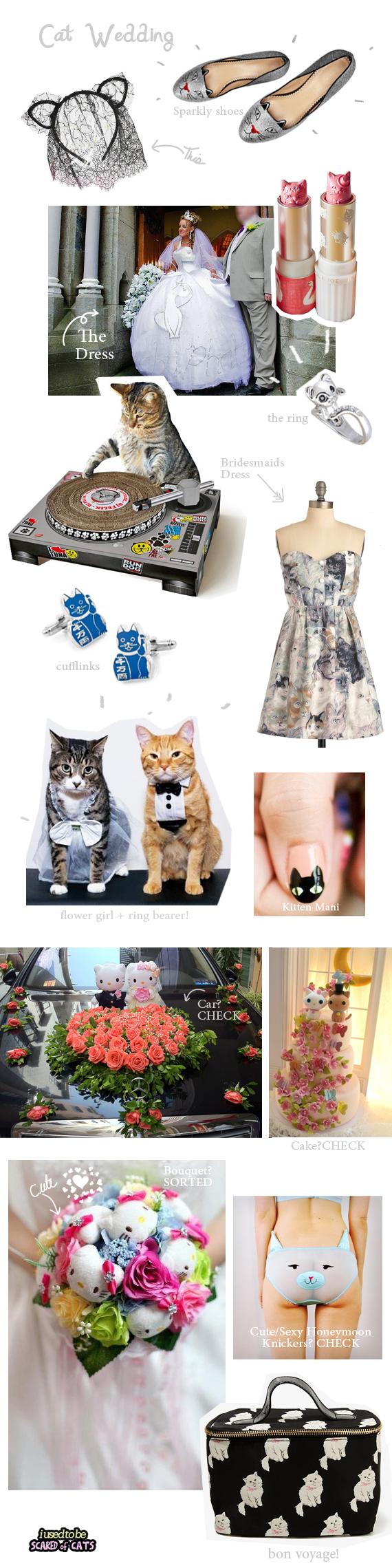 cat themed wedding