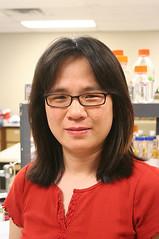 Texas A&M's Chu studies water-improving, estrogen-eating bacteria
