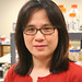 Texas A&M's Chu studies water-improving, estrogen-eating bacteria