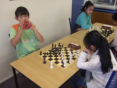 indoor games and sports, play, sports, recreation, tabletop game, games, chess, board game,