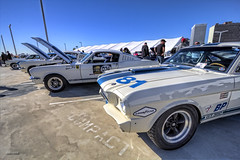 Shelby GT350'ss