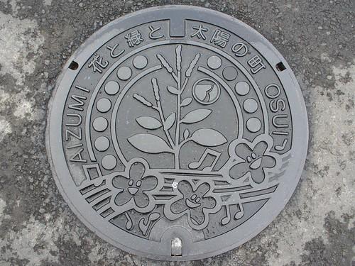 Aizumi Tokushima , manhole cover (徳島県藍住町のマンホール)
