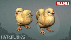Hatchlings_Batch01_Chicks_2013-09-25_684x384