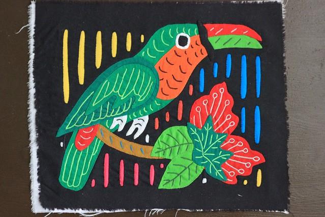 попугаи 001